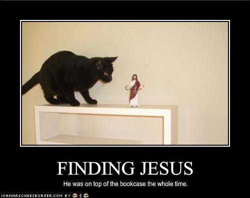 Gato encontrando Jesus